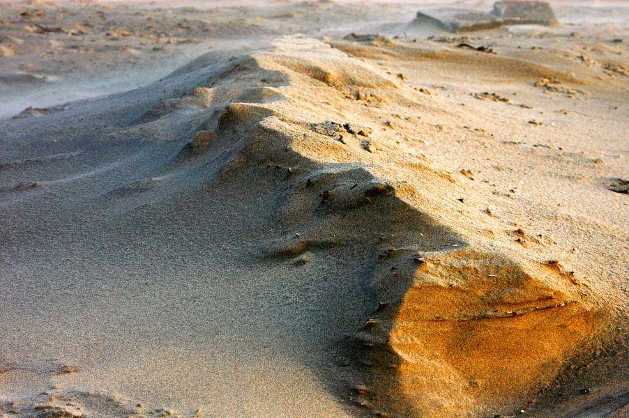The Dune van Brian Morgan