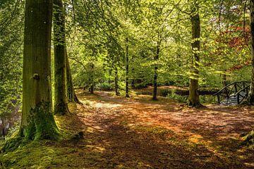 Serene rust in het park van Marcel Kieffer