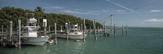 Florida XXXII van Michael Schulz-Dostal