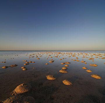 Tiny sand dunes van Martijn Schornagel