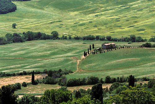 Toscaans landschap Val d'Orcia (Italië) von Pieter Wolthoorn