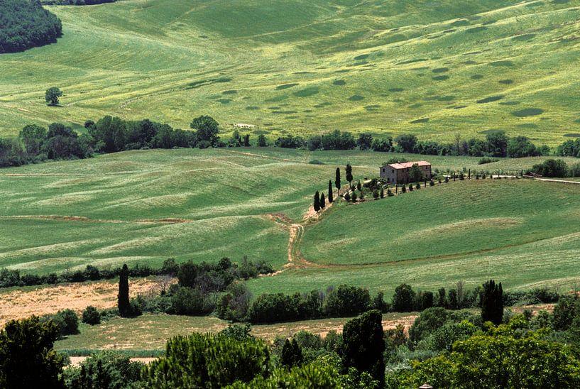 Toscaans landschap Val d'Orcia (Italië) van Pieter Wolthoorn