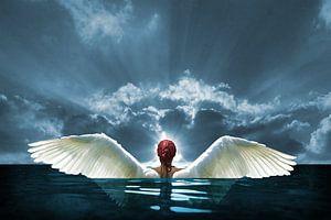 Engelen op aarde van Harald Fischer