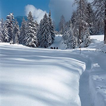 Wandeling in de sneeuw sur Rene van der Meer