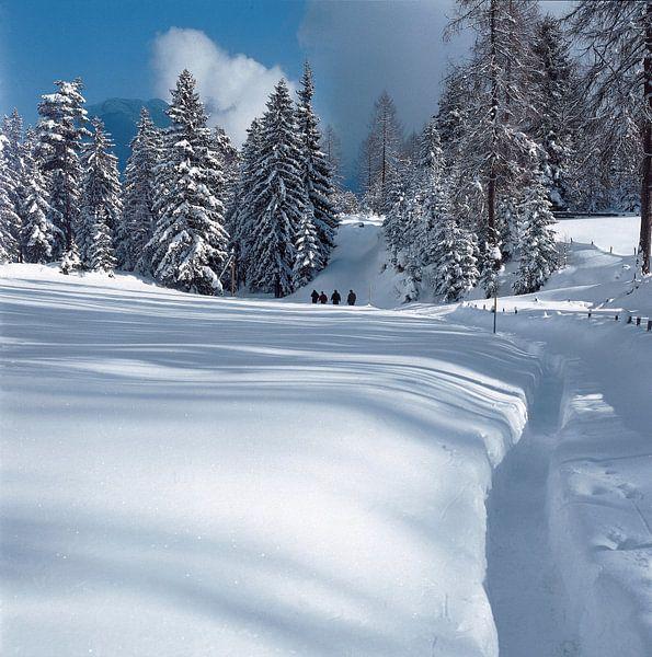 Wandeling in de sneeuw van Rene van der Meer