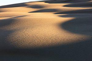 Erstes Sonnenlicht in Australiens Dünen von Rob van Esch