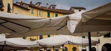 Terras Lucca von Arthur van Iterson