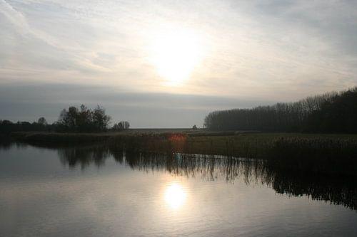 Nederlandse natuur