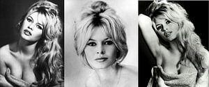 Brigitte Bardot Collage