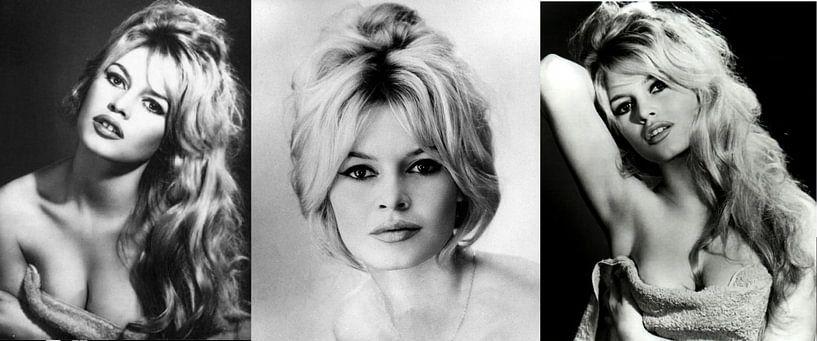 Brigitte Bardot Collage van Brian Morgan