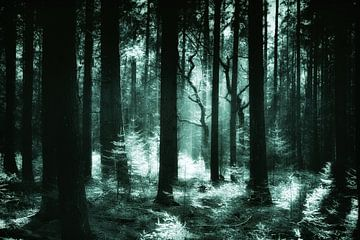 Gloeiende groene dennenbos van Jan Brons