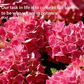 Onze taak in het leven is om tot volle bloei..... van Cora Unk