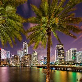 Miami Aperçu