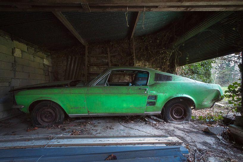 Verlassener Ford Mustang. von Roman Robroek