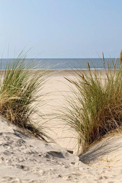 Een mooie dag op het strand.. van Miranda van Hulst