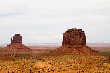 Zicht op Monument Valley van Sander Meijering