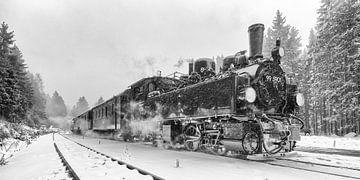 Dampfzüge im Harz, die alten Zeiten wieder aufleben. von Hans Brinkel
