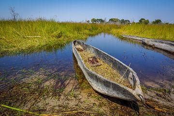 Un Mokoro au Botswana sur Nico  Calandra