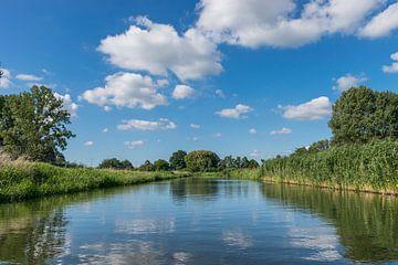 Perfektes Spiegelbild einer farbenfrohen Natur vom Wasser aus gesehen