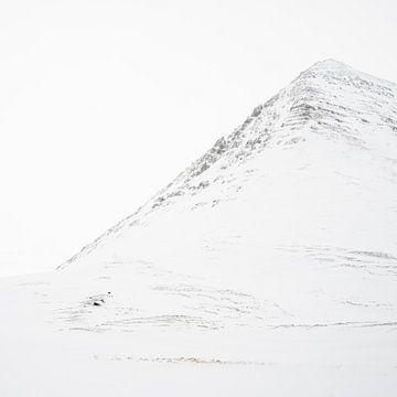 Weiße Berge auf Island von Andreas Hackl