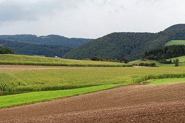 Diemelsee landschap, Duitsland