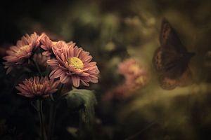Bloemen en bloei