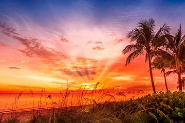 BONITA BEACH Beeldschone zonsondergang van Melanie Viola