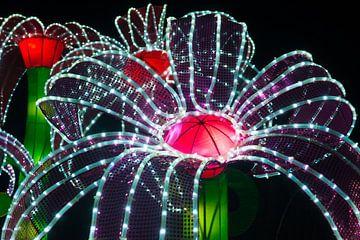 Chinees lichtfestival (chinese light festival) van Brian Morgan