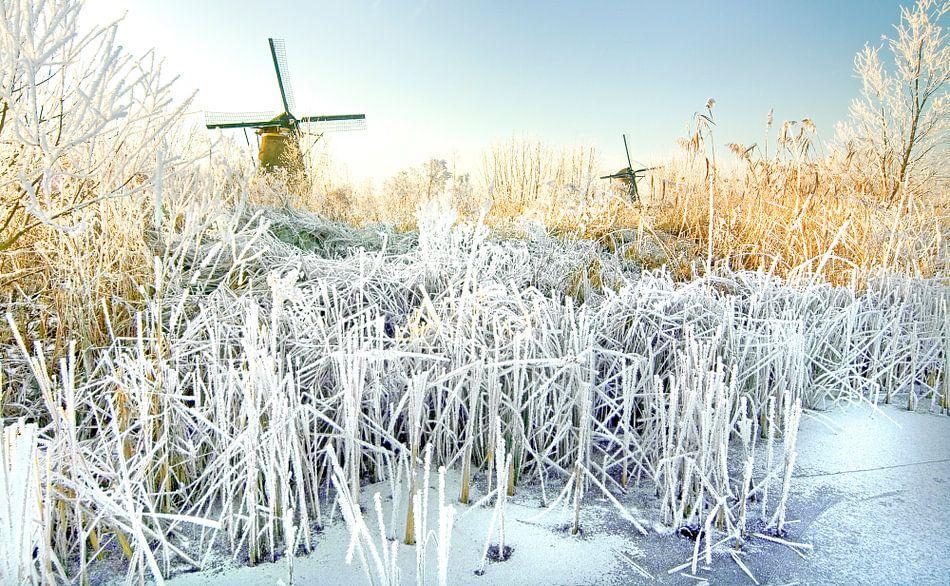 Frozen river van Dalex Photography