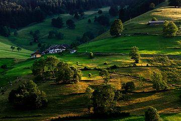 eenzame boerderij van Jürgen Wiesler
