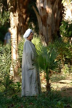Egyptische man van Lein Kaland