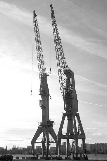 Kranen van Antwerpen