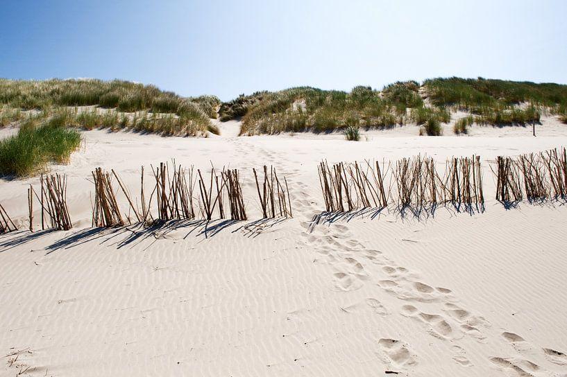 Duinen van Ameland van Wendy Bos