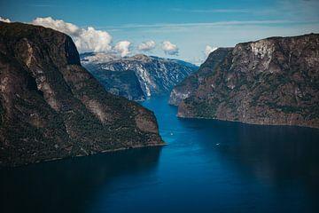 Fjorden in Noorwegen van Meral Soydas