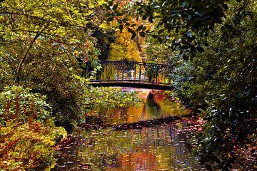 Herfst in Trompenburg Tuinen en Arboretum. van Elizabeth Babtist