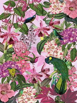 Der grüne Kakadu und seine Freunde, Version 2 von christine b-b müller