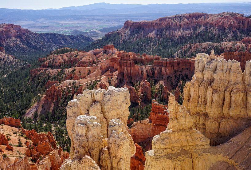 Bryce Canyon van Tineke Visscher