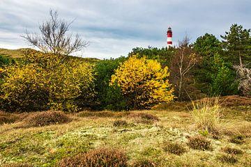 Landscape with lighthouse on the North Sea island Amrum, Germany van Rico Ködder