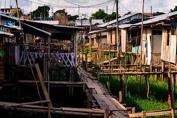 Traditionelles Dorf auf Stelzen im Amazonasgebiet von John Ozguc