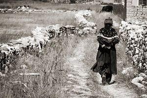 Traditionelle ladakhische Frau geht zu den Feldern außerhalb Padums