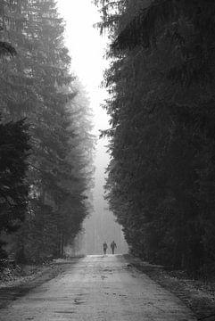Wanderer im Nebel von Elisa Sánchez Correa