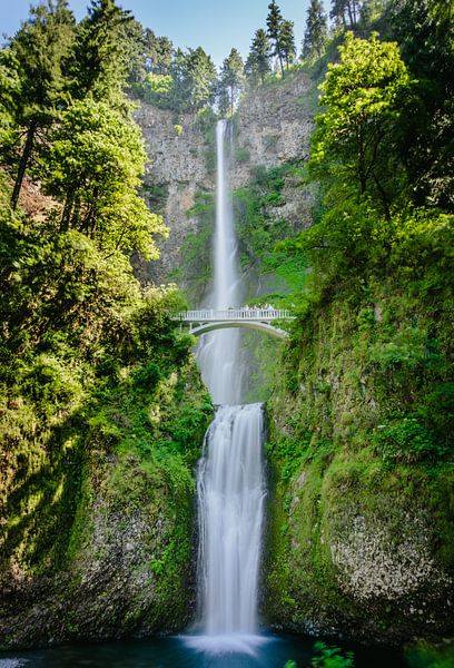 Multnomah falls - Oregon USA van Erwin van Oosterom
