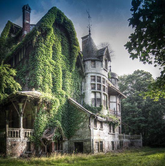 Myst and Magic van  David Smets