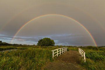 Regenbogen im Land van Cuijk von Bart van Dinten