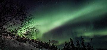 L'aurore boréale en Laponie finlandaise sur Suzanne De Boer