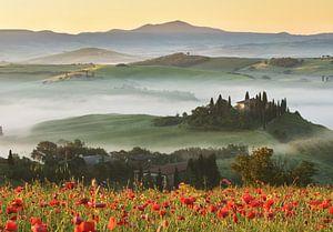Tuscany hills in spring van Olga Ilina