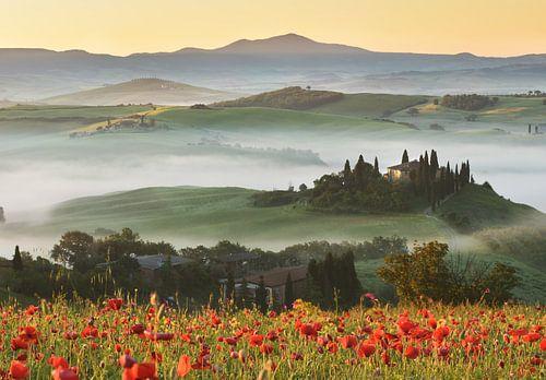 Tuscany hills in spring von Olga Ilina