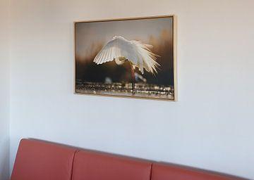 Kundenfoto: Poetsende Grote Zilverreiger von Beschermingswerk voor aan uw muur