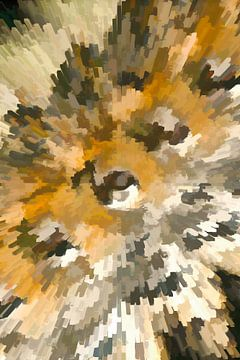 Explosion van Michar Peppenster
