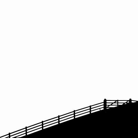 Hekje op de dijk van arjan doornbos